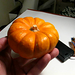 Stock Ticker Mini Pumpkin