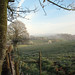 Mist Rising from the Valley