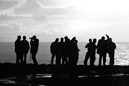Group Of People Talking Silhouette
