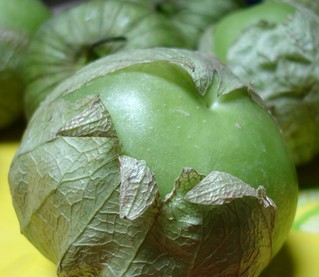 Tomatillo | by Kate Chan