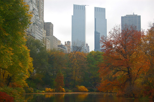 New York City fall foliage | by FredrikN