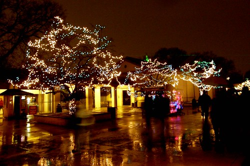 Elegant Brookfield Zoo Night Lights Brookfield Zoo Holiday Magic 08 Flickr Photo  Sharing . Design Inspirations