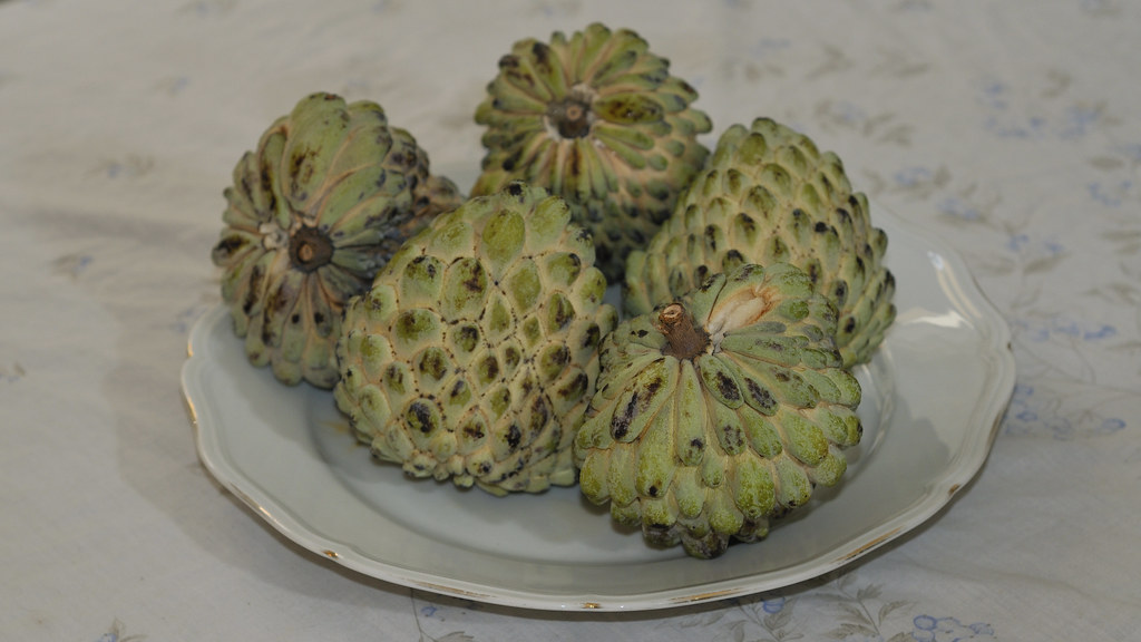 ashta in lebanon - atemoya fruit - guanabana