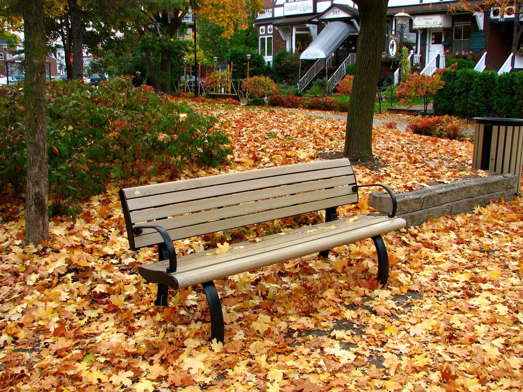 un banc de parc dans les feuilles d 39 automne a park bench flickr. Black Bedroom Furniture Sets. Home Design Ideas
