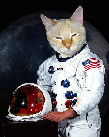 Catstronaut | by doctorhectic