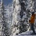 Hard-Core Skier