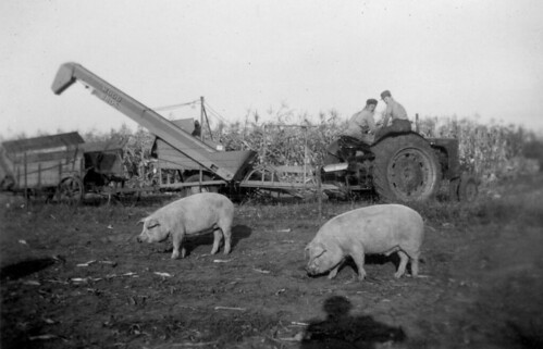 What Is Agriculture >> 1940's Farming in Iowa | Flickr - Photo Sharing!