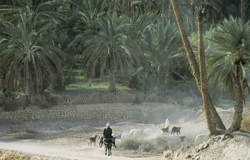 Riding on a path | by World Bank Photo Collection