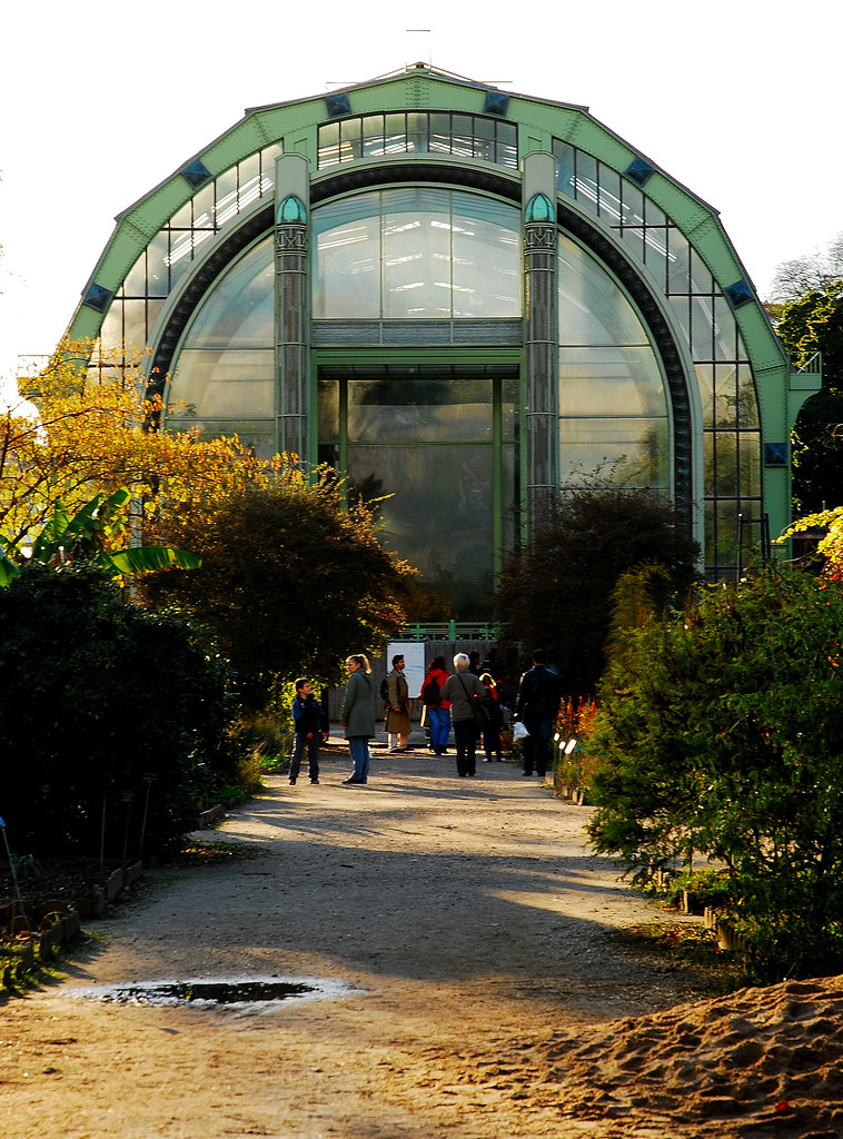 42 03 novembre 2008 paris jardin des plantes serres trop for Jardin botanique paris