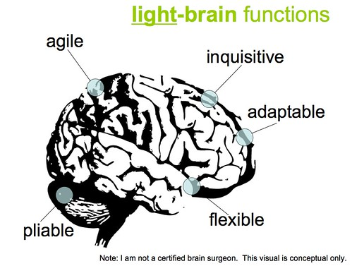 Light Brained (Not Right Brained) | by David Armano