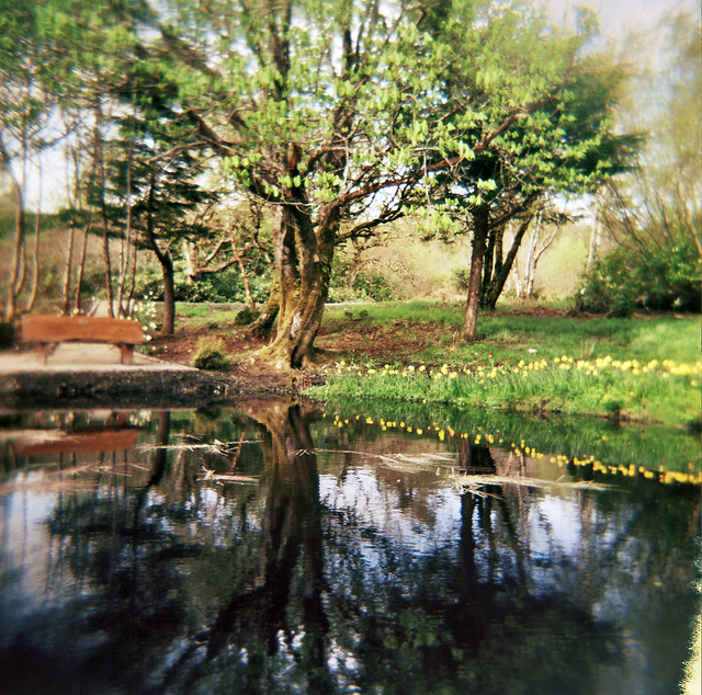 New pool lews castle grounds flickr photo sharing for Castle gardens pool