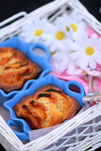 Apricot and Wattleseeds Tea Cakes | by tartelette