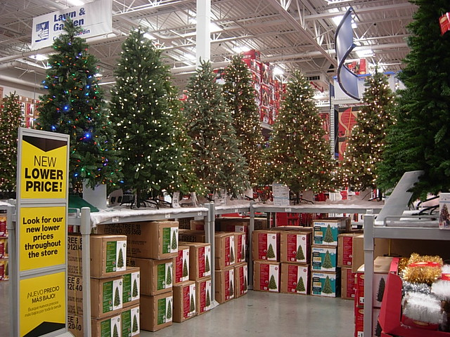christmas trees at lowes in torrance ca by reto kurmann