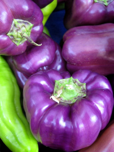 purple peppers | by c.buras