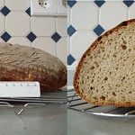 Wheat-mixed-Bread – Kasseler Brot