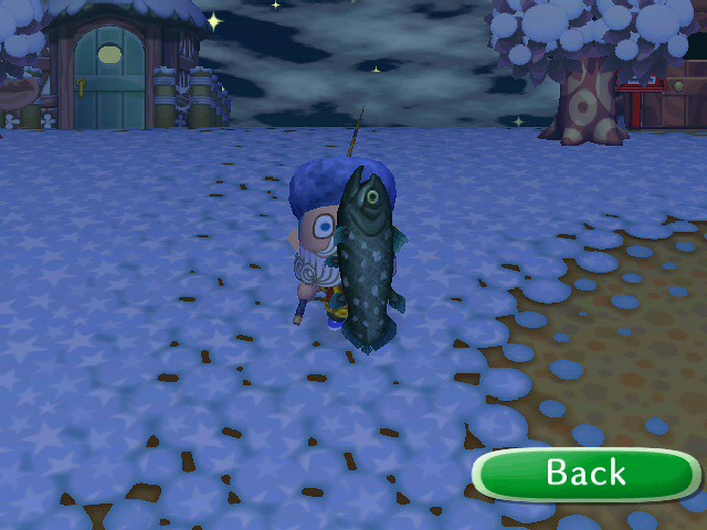 how to catch a coelacanth in animal crossing city folk