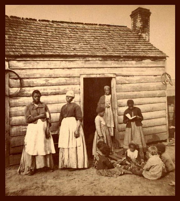 1 The Cotton Revolution