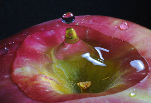 Apple water splash | by linden.g
