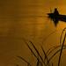 Fishin' on the Mekong river