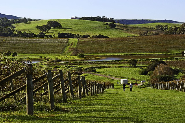Gerringong Australia  city pictures gallery : Crooked River Winery, Gerringong, NSW 2535, Australia | Flickr Photo ...