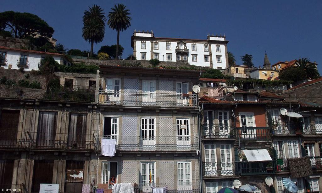 Palais et palmiers de Porto