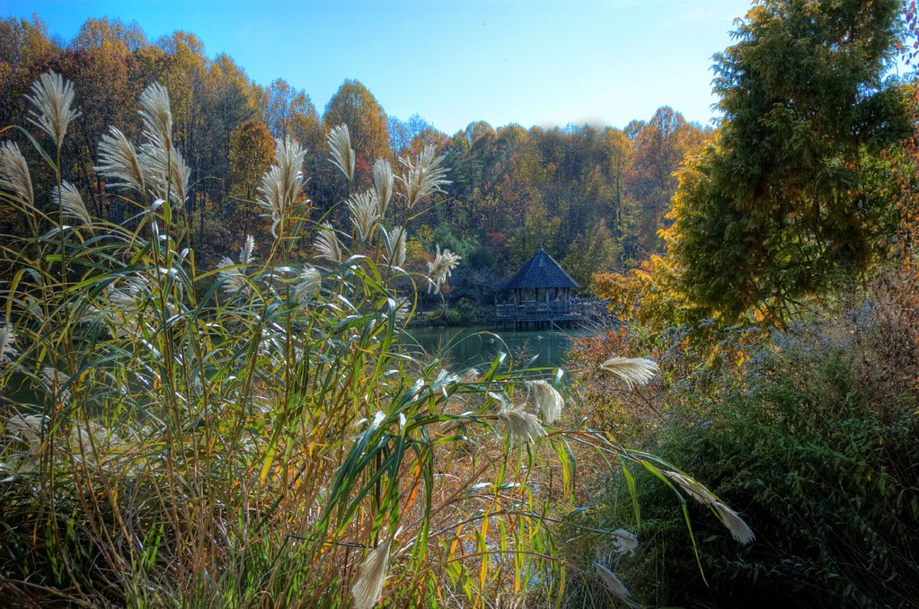 Meadowlark Gardens Vienna Va Autumn I Decided To Try