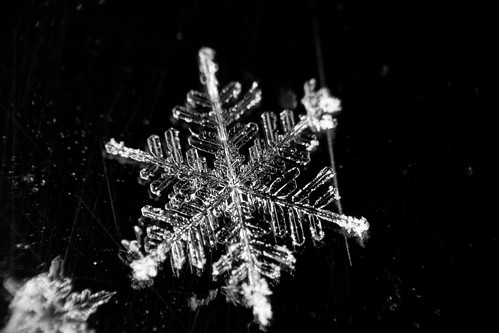 Snowflake 1 | by Phil Peck