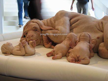 Dog And Human Mix Human hybrid dog human hybrid