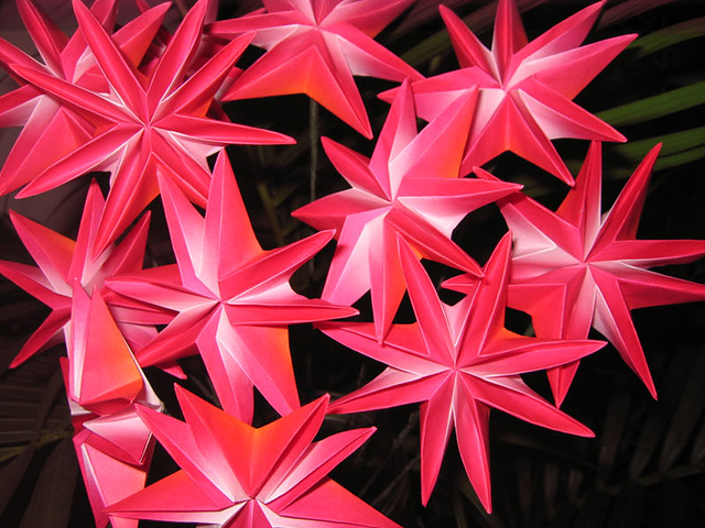 Origami Star Flowers Please View My Profile For More Info Flickr