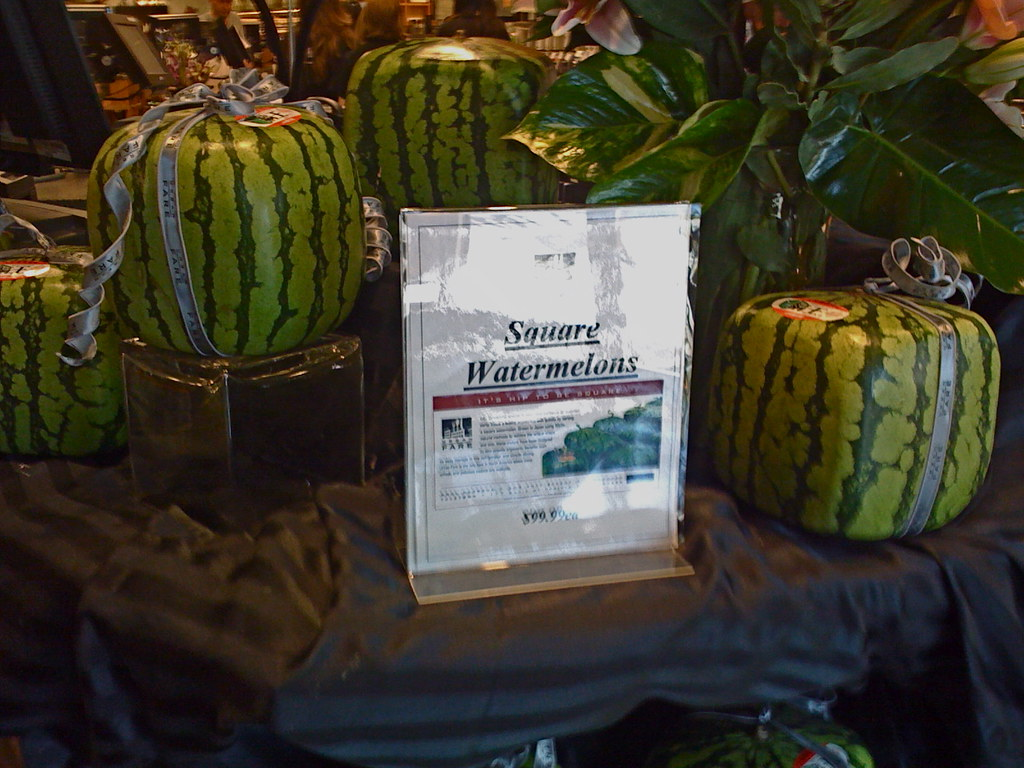 Square watermelons the future is now dave shea flickr - Square watermelons how and why ...