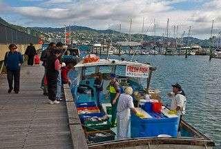 Sunday morning fish, Wellington, New Zealand, 9 Nov. 2008 | by PhillipC