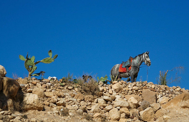 Mexican Landscape Images Mexican Landscape | by