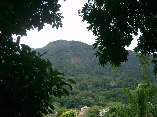 Jardin botanique for t de tijuca flickr photo sharing for Jardin foret