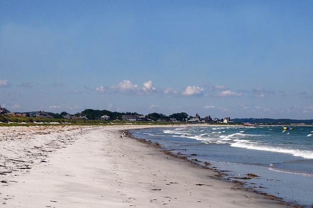 Good Harbor Beach Dogs