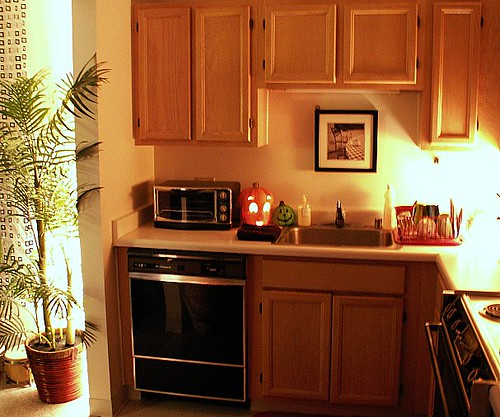 Chicago High-rise Studio Apartment - Kitchen