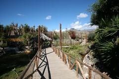 Манки-парк. Monkey Park, Tenerife