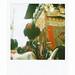 祇園祭2008「山鉾巡行 月鉾と舞妓さん」 Gion Matsuri 2008: the Grand Parade of Yamahoko Floats, Maiko and Tsukihoko
