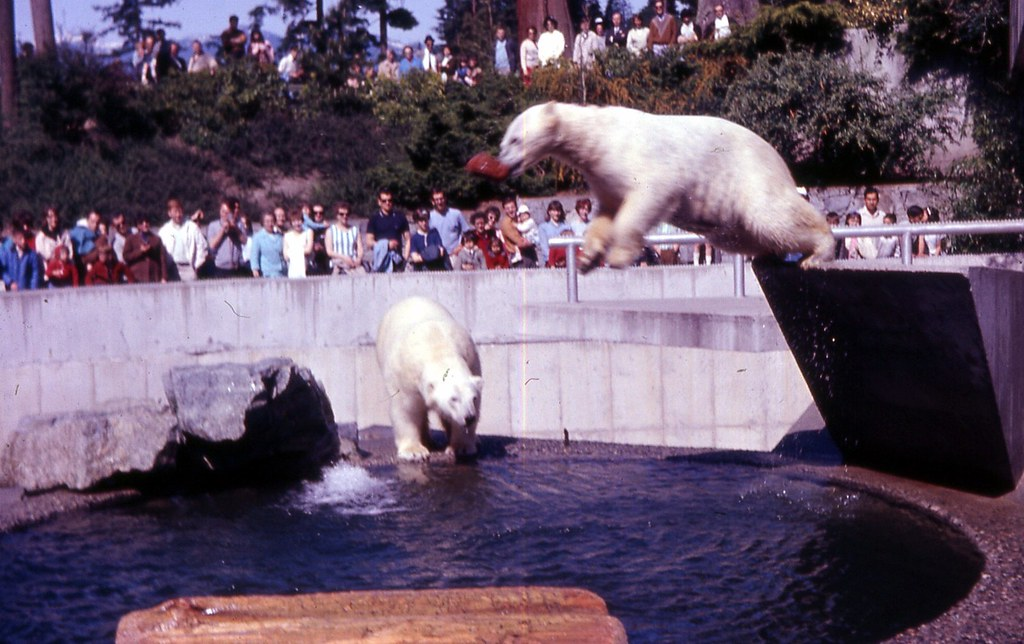 Stanley Park Zoo, Vancouver, BC | 040 British Columbia ...