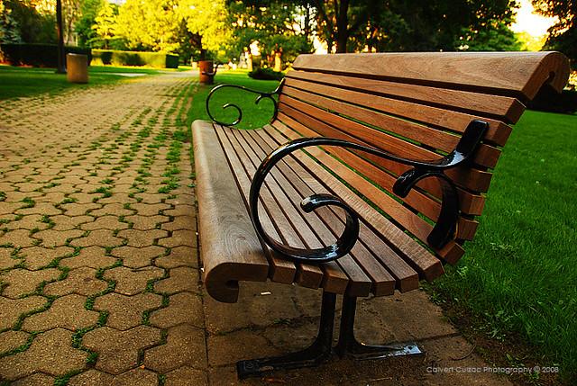 University Of Toronto Park Bench Calvert Flickr