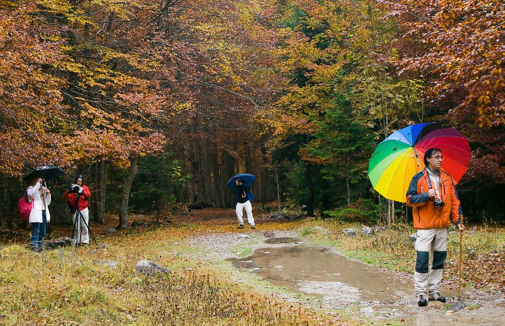 Fotos de colores