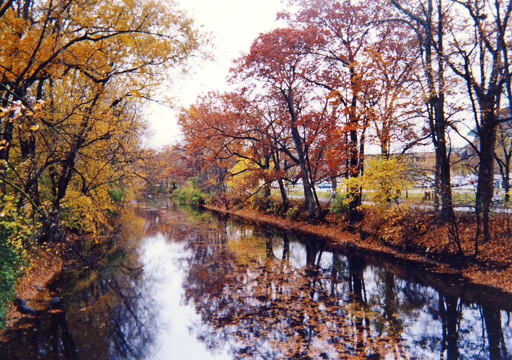 Red Cedar River ~ Red cedar the river on michigan state