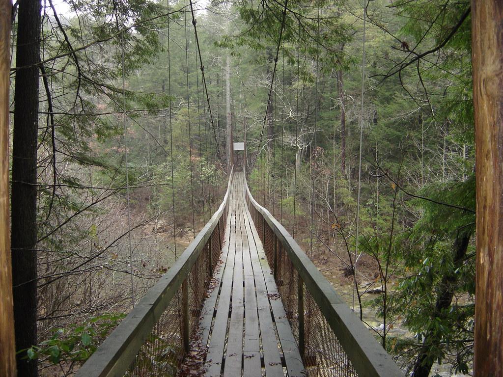 Long swinging bridge photos congratulate