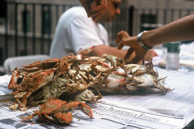 crab picking machine