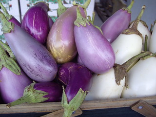 Eggplant from Wayward Seed Farm | by swampkitty