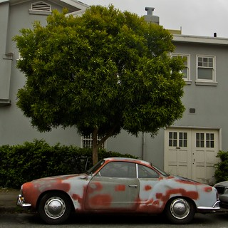 Spotted Car with Tree | by Lynn Friedman
