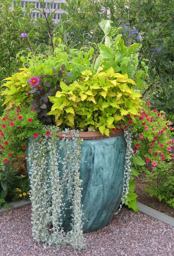 Outside United States Botanic Garden | Stephanie Clifford ...