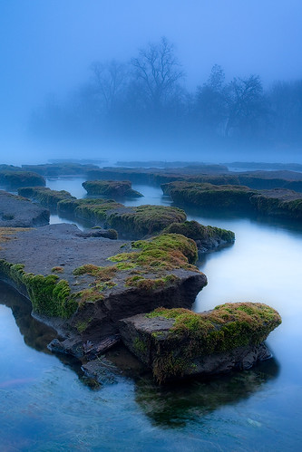 The Furrows - Foggy Sacramento River California | by Stephen Oachs (ApertureAcademy.com)