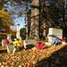 Oakwood Cemetery - Troy, NY - 19