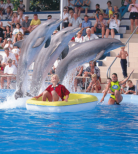 Golf Fantasia and Marineland | Enjoy 2 attractions in 1 ...