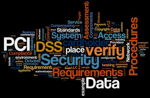 Information Security Wordle: PCI Data Security Standard 1.2 | by purpleslog